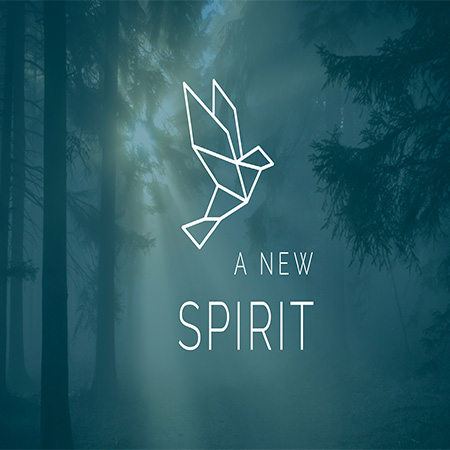 A New Spirit Sermon Series at Beargrass